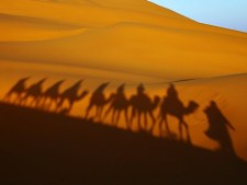 Détails : Berber Tours Of Morocco - Private Desert Tours and day trips out of Marrakech